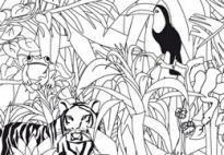Dschungel - Suchbild - Bildkärtchen für Kindergarten KiTa