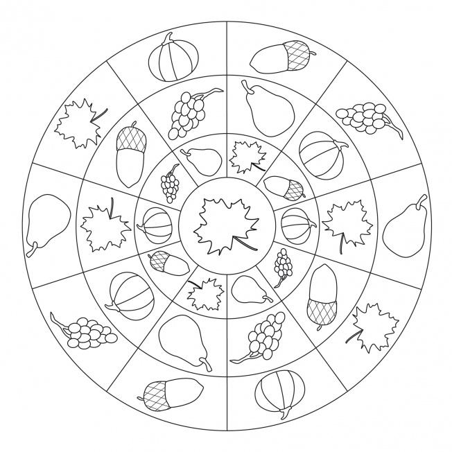 Herbst-Mandala mit Herbstfrüchten für Kindergarten KiTa