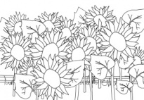Coloring Pages for pre-K, kindergarten and elementary school
