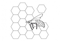 Honeycomb Prints for pre-K, kindergarten and elementary school
