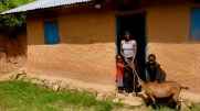 Agro-Innovation: Families Receive Goats through Village Revolving Fund