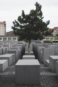 Memorial_to_the_Murdered_Jews_of_Europe5