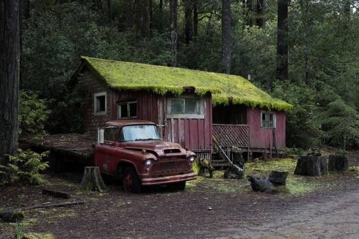 Shoreline Highway, California
