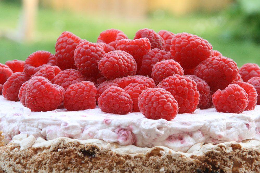 opskrift på nøddebund med frugtskum og hindbær