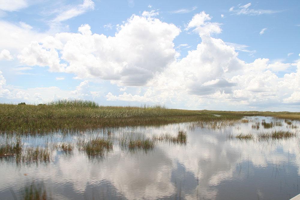 Everglades Safari Park - Airboat ride
