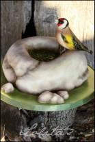 ptićica 2
