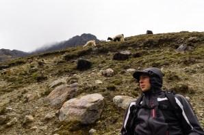Start des Prä-Inka Wegs