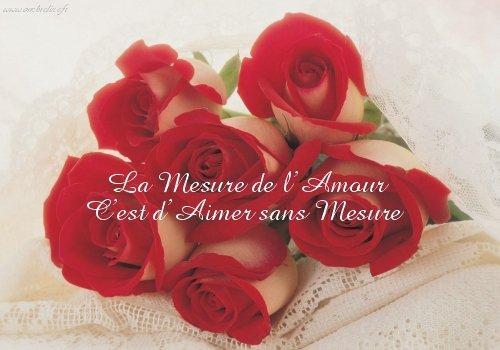 https://i0.wp.com/kikounette84.unblog.fr/files/2008/06/amour20rose1.jpg