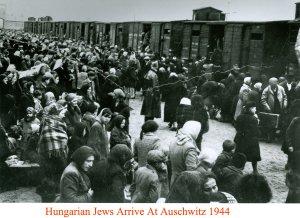 Hungarian Jews arriving at Auschwitz 1944