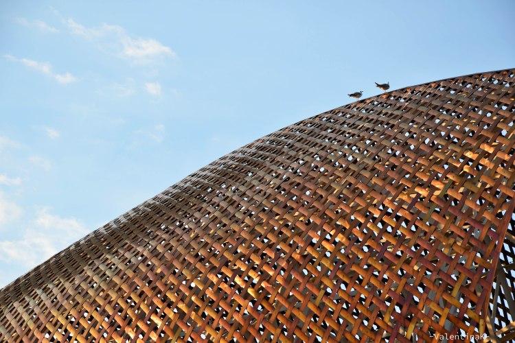 il profilo del pesce d'oro di barcelona con gabbiani
