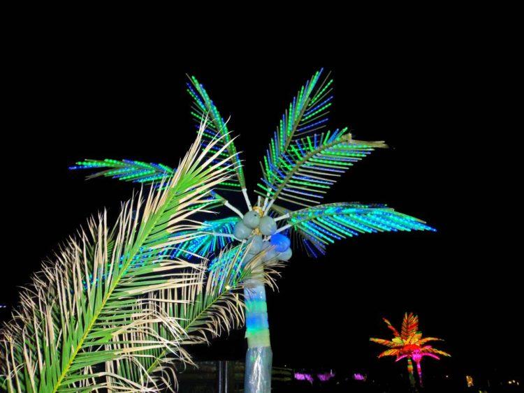 sabato d'estate a marina di rvenna: le palme del toto