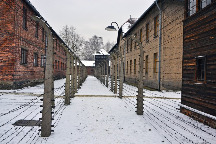 auschwitz-birkenau 27 gennaio: il percorso tra il filo spinato ad Auschwitz I