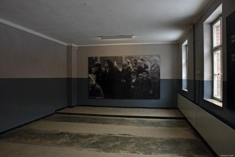 auschwitz-birkenau 27 gennaio: fotografia in bianco e nero in una baracca