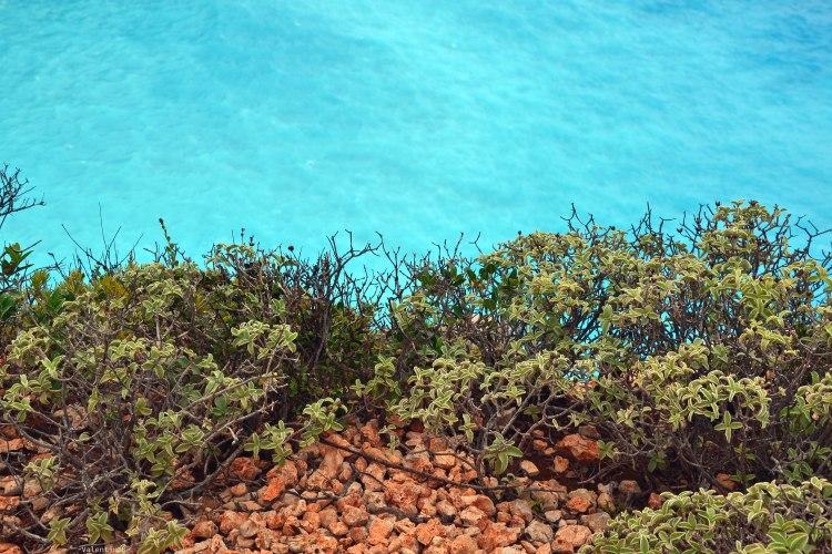 Undici spiagge imperdibili sull'isola di Zacinto: acqua di mare smeraldo e vegetazione mediterranea