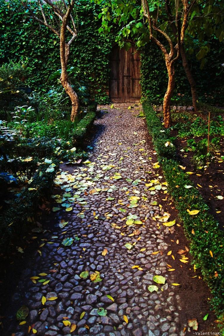 luci e ombre di madrid: il giardino della casa di Lope de Vega