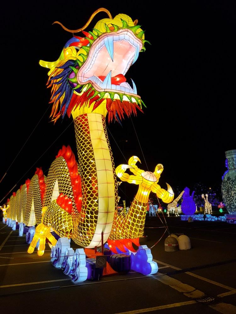 Il festival delle lanterne di fico: il dragone cinese