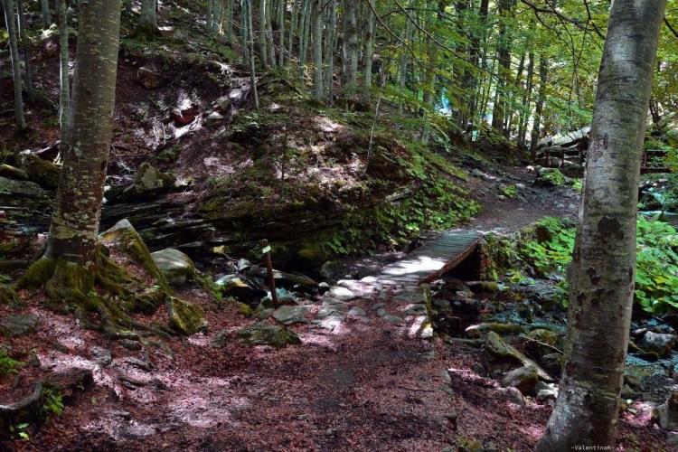 gita alle cascate del dardagna: il ponticello di legno che attraversa il rio cavo