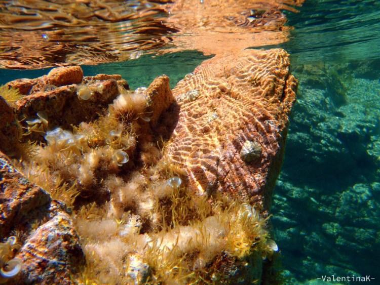roccia multicolore nel mare della baia di tinnari