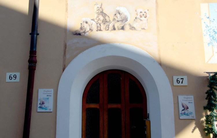 borgo san giuliano: dettaglio di alcuni murales