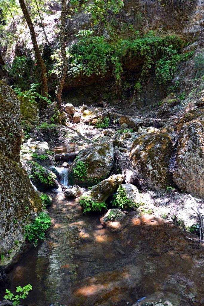 scorcio del fiume pelekanos alla valle di petaloudes