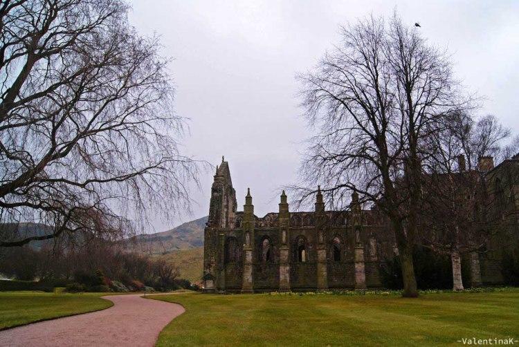 edimburgo città: la abbazia di Holyrood nel bellissimo parco