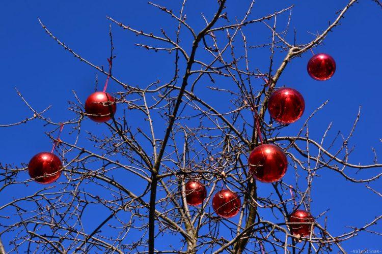 Il natale a Bressanone: albero e palline rosse