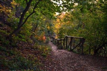 sentiero dei bregoli al tramonto