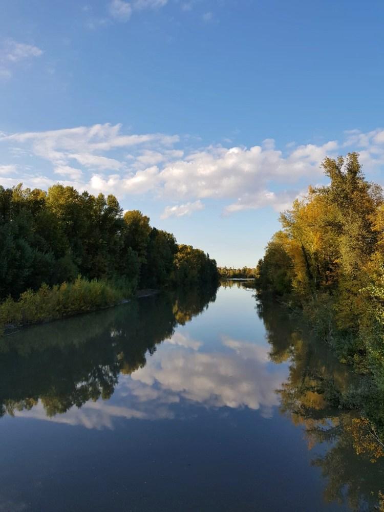 vista sul fiume reno dalla passerella