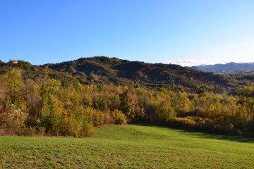 Scorci di prato e bosco del parco talon a Casalecchio di Reno