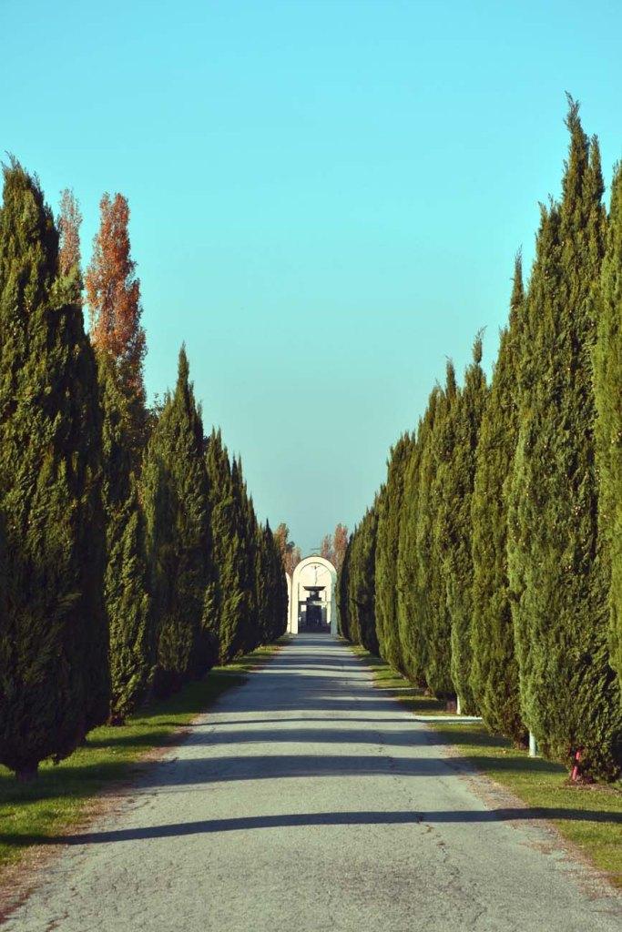 il viale che porta verso il cimitero di tresigallo