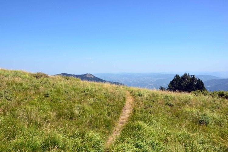 escursione al Monte Cimone: sentiero erboso che guarda verso la pianura