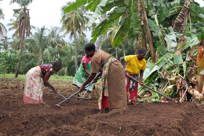 Women Farmers in Kiroka