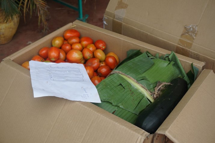 Box full of vegetables to be sent to Dar es Salaam