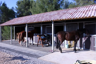 loddon stables (12)