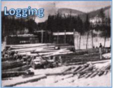logging category