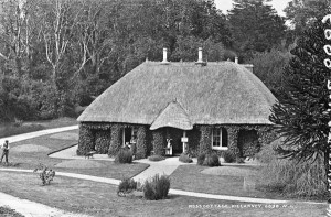 Ross Cottage 1865 - Lawrence Collection -National Library of Ireland