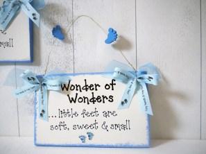 Wonder Of Wonders €8.95 http://craftbay.ie/Product/438/Kids/Baby-And-Toddler/Wonder-of-Wonders