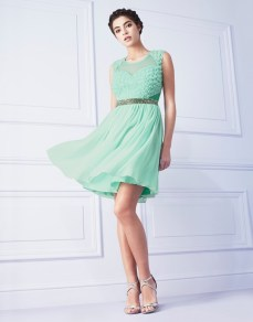Lipsy @ Next €101 - 3D Floral Emebellished Waist Dress http://ie.nextdirect.com/en/gl61162s10#L43315