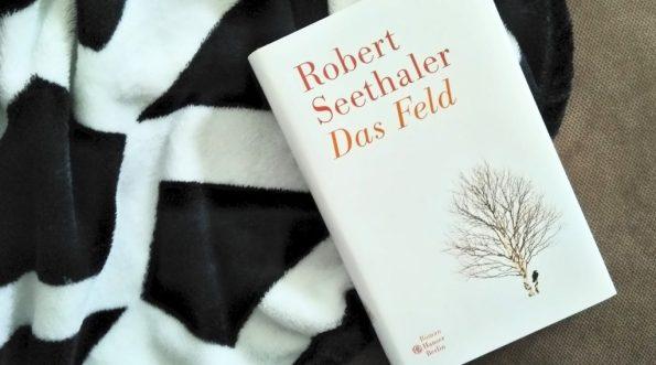 Robert Seethaler, Das Feld