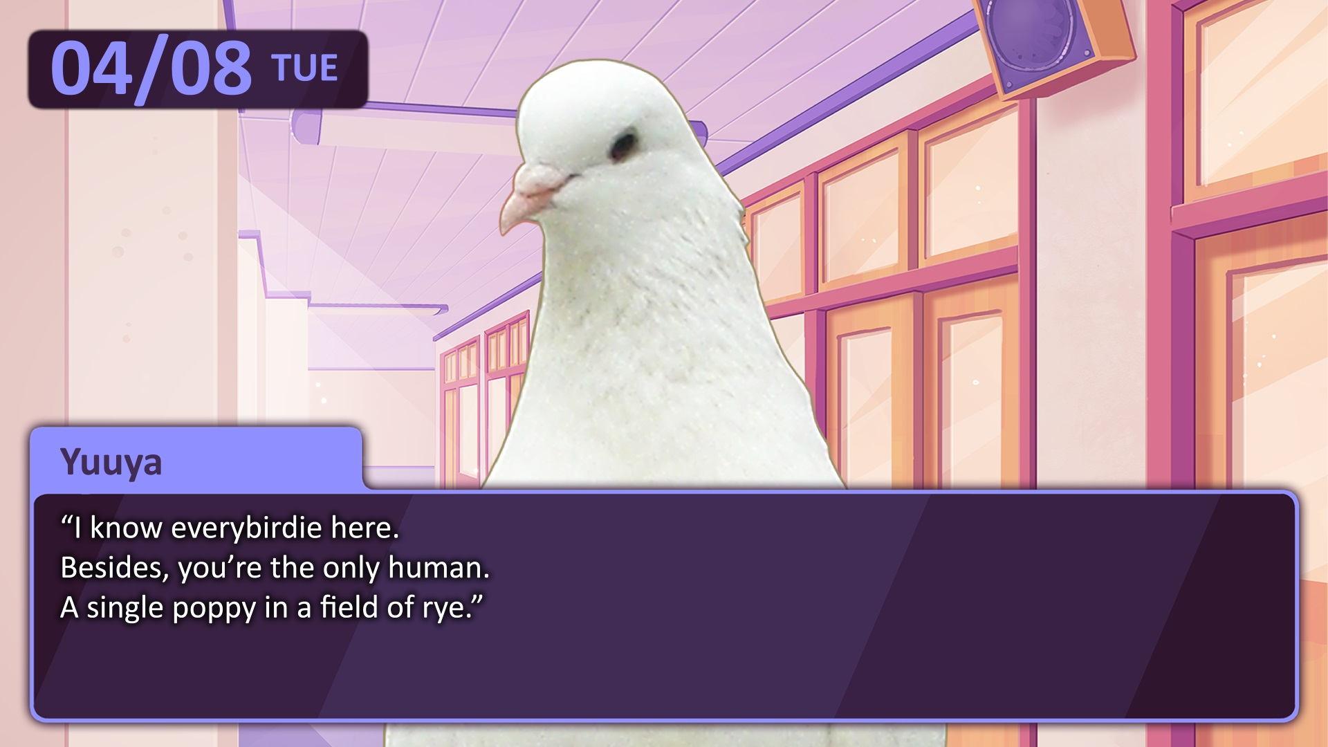 Courting a woman vs dating simulator