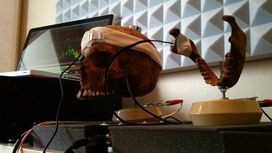 Skull for INSIDE soundtrack