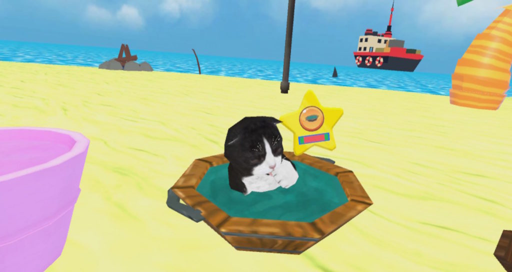I've always wanted to take my cat to the beach.
