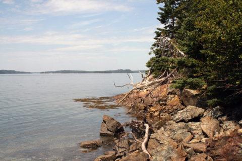 Hog Island, Jones Cove, Flanders Bay, Gouldsboro, Maine.