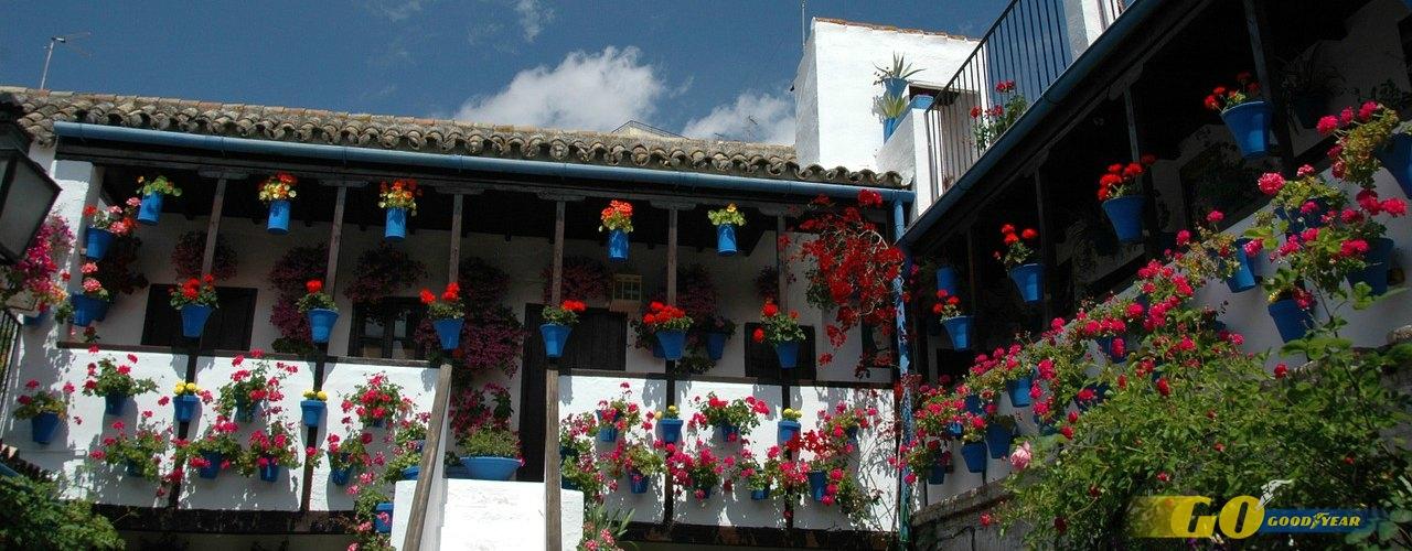 Córdoba patios