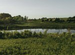 Lucas County Iowa Land For Sale (118)