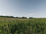 Lucas County Iowa Land For Sale (65)