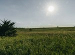 Lucas County Iowa Land For Sale (72)