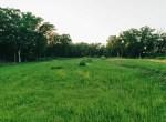 Land for Sale Decatur County Iowa-32