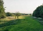 Land for Sale Decatur County Iowa-4
