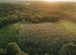Land for Sale Decatur County Iowa-56